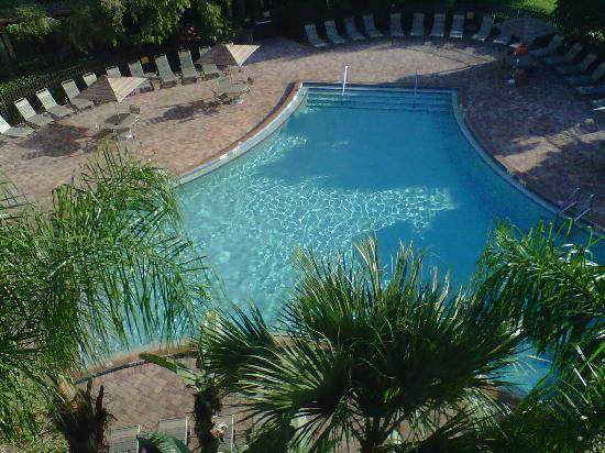 Clarion Inn Lake Buena Vista: This is the pool taken from the 5th floor.