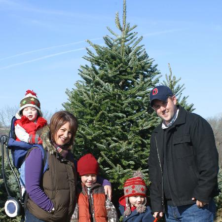 Pine Tree Barn: 150 Acre Family Christmas Tree Farm