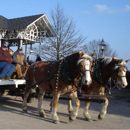 Pine Tree Barn: Horse Drawn Wagons at Christmastime (See schedule)