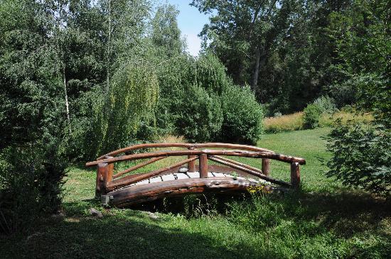 En El Corazon del Bosque: puente y parque