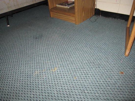 Grand Inn Fargo : Dirty carpets
