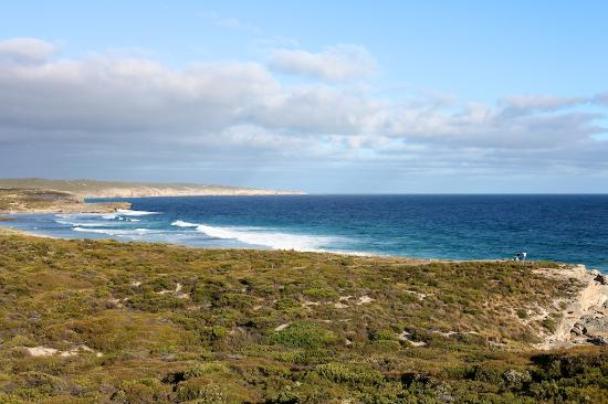 ‪‪Southern Ocean Lodge‬: The view from our room‬