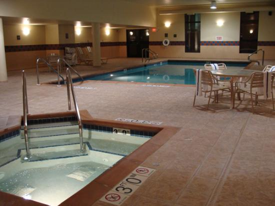 Hampton Inn Dubuque: Pool and jacuzzi