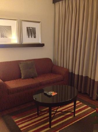Embassy Suites by Hilton Jackson - North/Ridgeland: living room