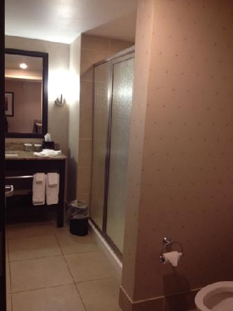 Embassy Suites by Hilton Jackson - North/Ridgeland: bathroom view from the hallway
