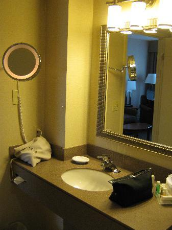 Holiday Inn & Suites Ottawa Kanata: bathroom mirror