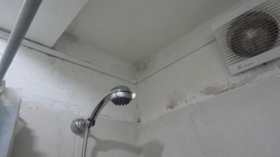 1949 Hostel: banheiro em más concições