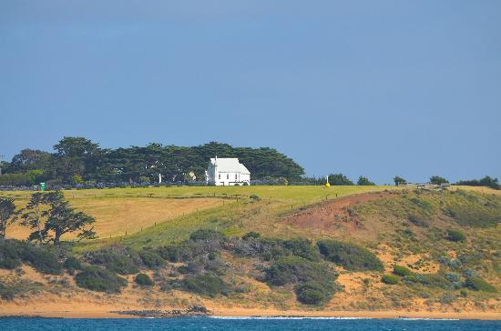 Wildlife Coast Cruises: Church on the hill