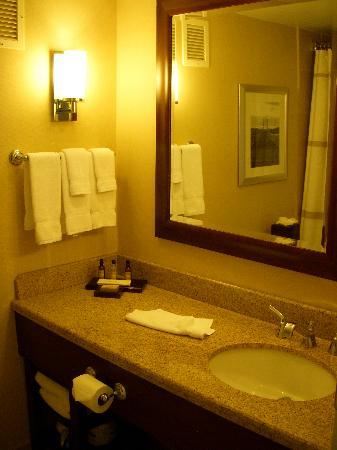 Colorado Springs Marriott: bath