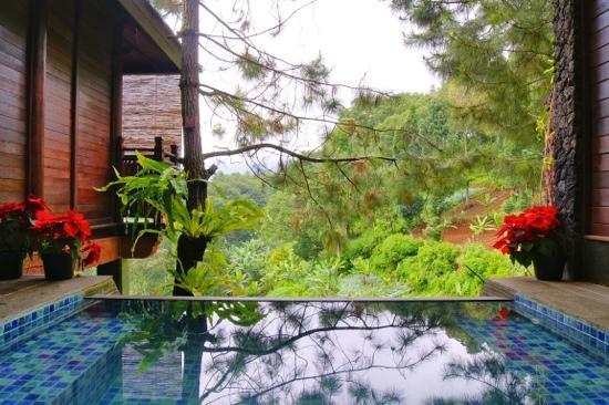 talita picture of bukit talita mountain resort and spa puncak rh tripadvisor com
