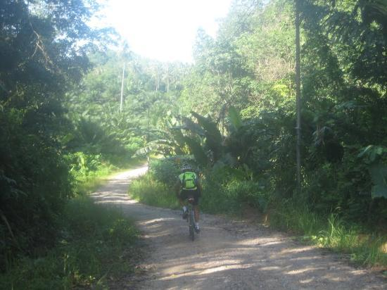 Fieldskills Adventures - Day Tours: fantastic stretch of off-road cycling