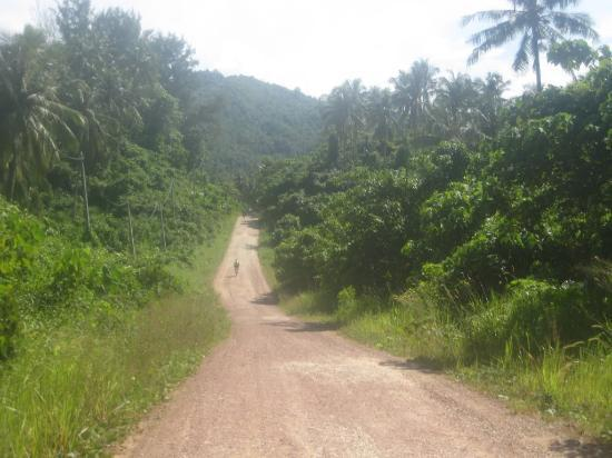 Fieldskills Adventures - Day Tours: really enjoyable off-road cycling neat the Tip of Borneo