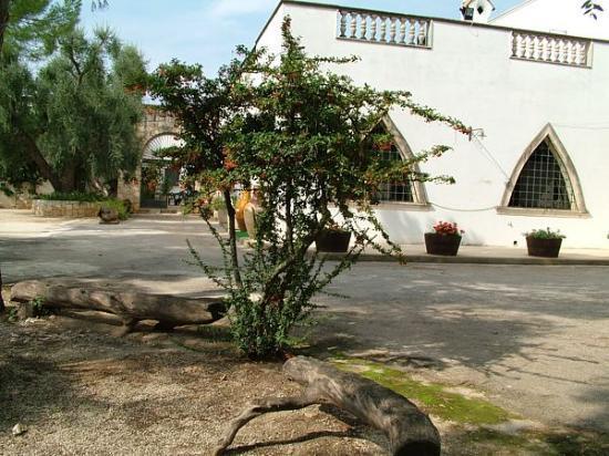 Francavilla Fontana, Italia: Esterno della struttura