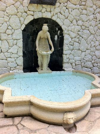 Parque Ecologico Ouro Fino: Fonte D'Água/Source Water