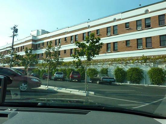 Hollywood Historic Hotel: Parte trasera del hotel