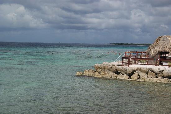 Excelsior Casino Aruba: snorkelen met geweldig mooie vissen