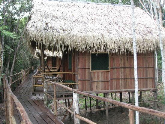 Tariri Amazon Lodge: the lodge