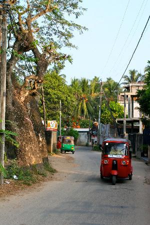 Palm Grove: The beach is ten minute walk by local shops and eateries, or if you are lazy 2 min and 100 rupee