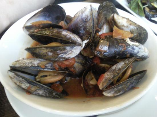 Sante Wine Bar and Restaurant: Steamed mussels with Provencal sauce
