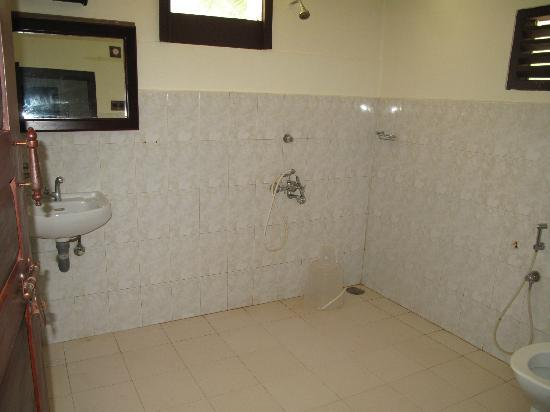 Akkarakalam Memoirs: our bathroom