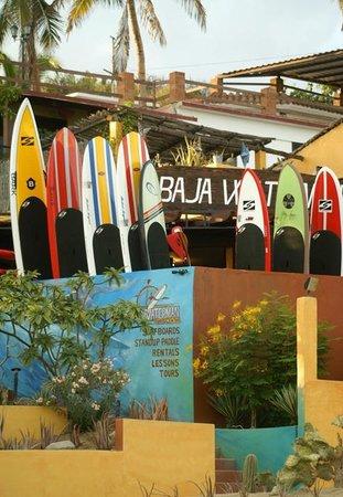 Baja Waterman Surf Central: Baja Waterman tienda de Surf, SUP & alquiler de tablas