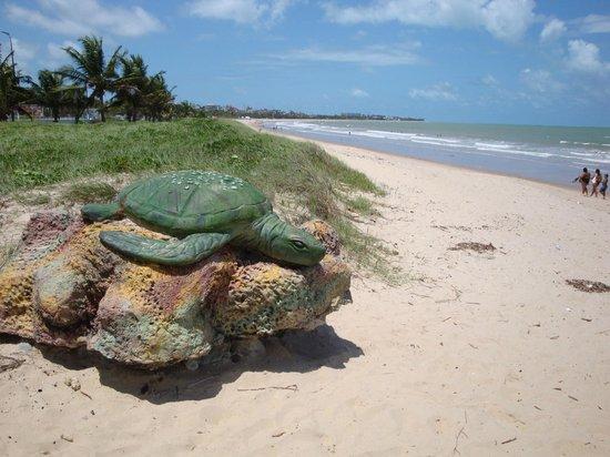 Жоао-Пессоа: Intermares Beach
