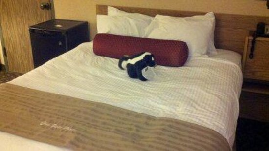 Mohican Lodge and Conference Center: Greeted with a stuffed skunk lol :)