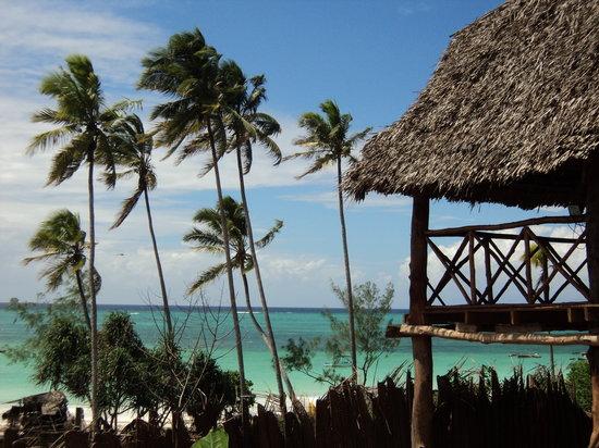 Baby Bush Lodge Zanzibar - Kiwengwa View