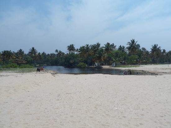 Abad Turtle Beach: The beach