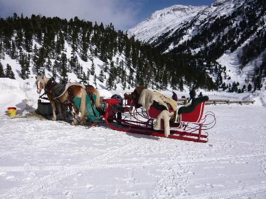 Hotel Roseg Gletscher: Pferdeschlitten