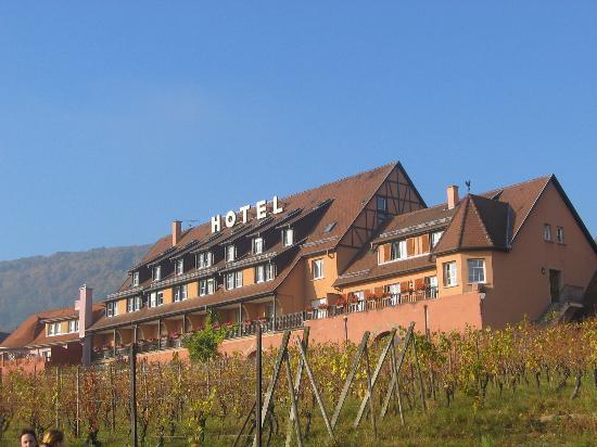 Hotel le Relais du Vignoble : hotel rustig gelegen in de wijngaarden