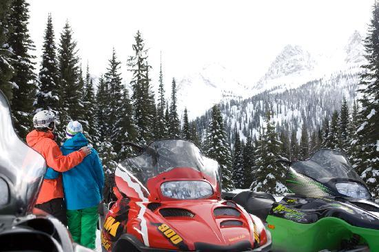 Snowmobiling in Fernie with Prestige Tours