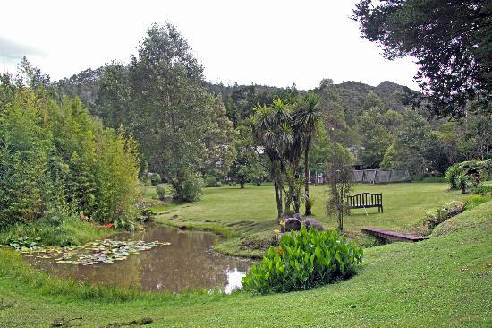 Bushland Park Lodge & Retreat : Gardens at the Bushland Park Lodge