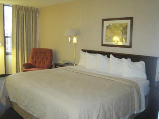 Quality Inn Schaumburg: King size bed