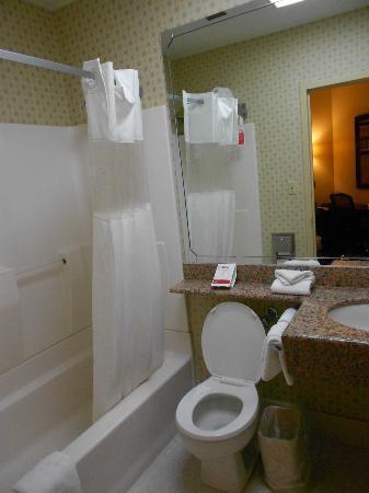 Ramada Bronx: Cuarto de baño