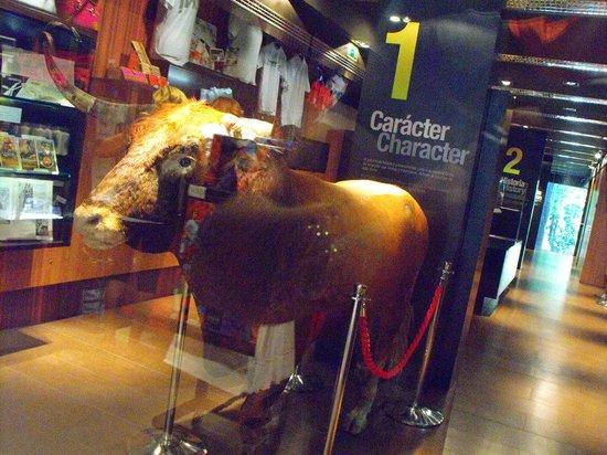 Museo del Encierro Museum: l'entrata