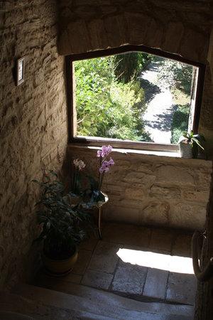 Histoire d'Hôtes : Les escaliers avec vue sur le jardin