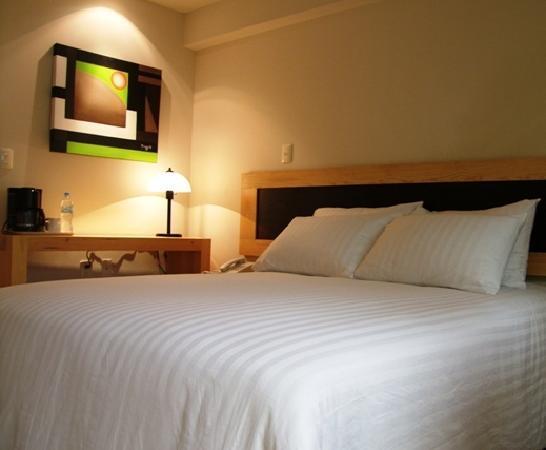 Rymma Hotel : Habitación Hotel Rymma Morelia Centro histórico