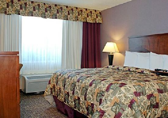 Quality Inn: King Bedded Guest Room