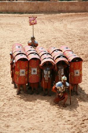The Roman Army and Chariot Experience: Fuori dalla Testuggine