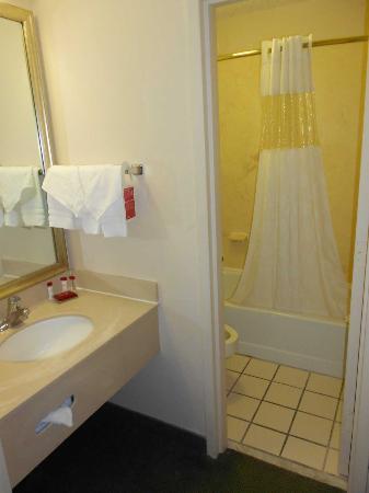 Ramada Orlando Near Convention Center: Lavabo y cuarto de baño