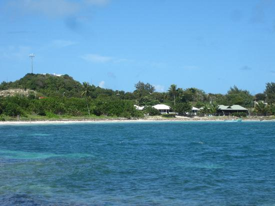 Dutchman's Bay Cottages: View of the cottages from Cecelia's Restaurant
