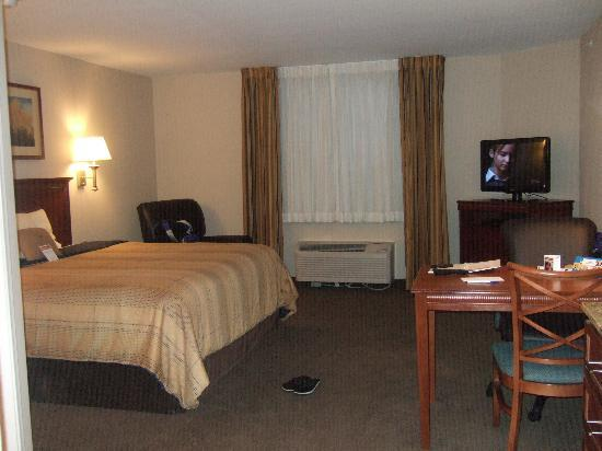 Candlewood Suites Pittsburgh Cranberry : Room
