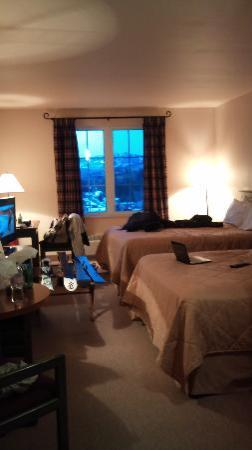 Comfort Inn & Suites: View into the room