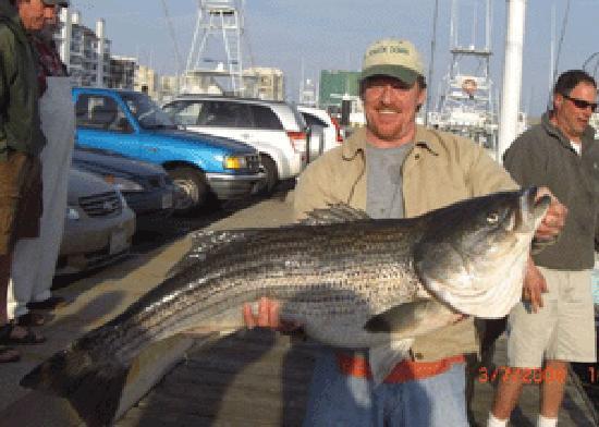 Aquaman sportfishing charters virginia beach all you for Va fishing charters