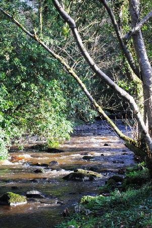 Gleann Fia Country House: Brook