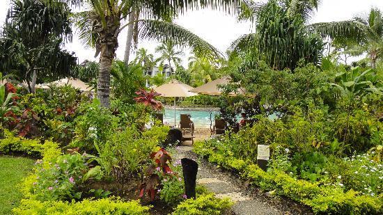 Radisson Blu Resort Fiji Denarau Island: Entrance to the resort