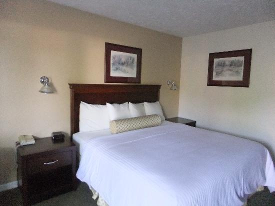 Baechtel Creek Inn: Our room (queen bed).