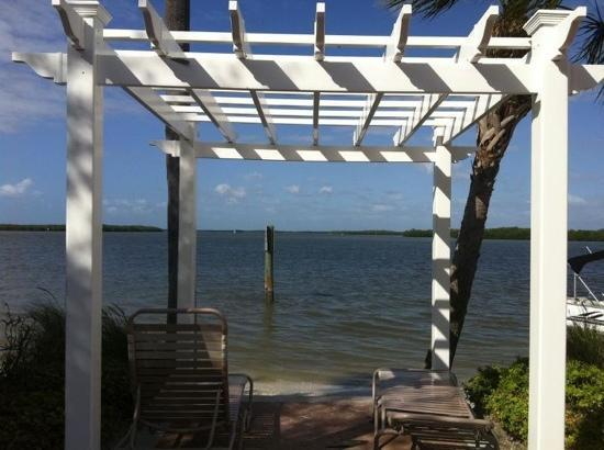 Flippers on the Bay: Gorgeous views from Flippers