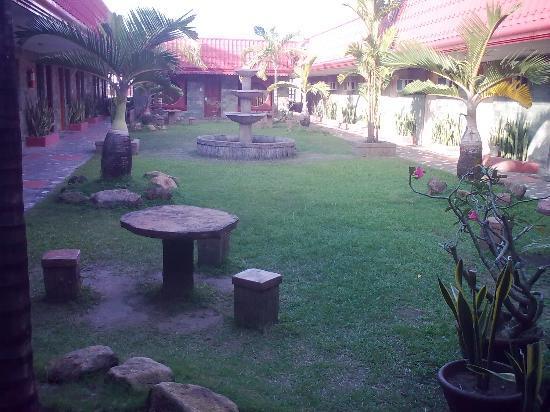 Check Inn: rooftop garden